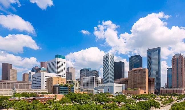 Planting_Trees_in_Houston_–_Easy_Steps
