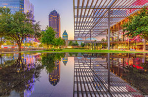 Tree_Removal_Requirements_In_Dallas