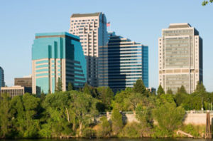 Best Trees for Sacramento