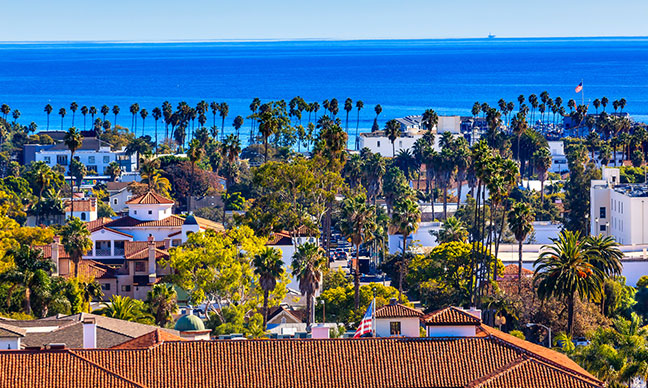 California_Lilac