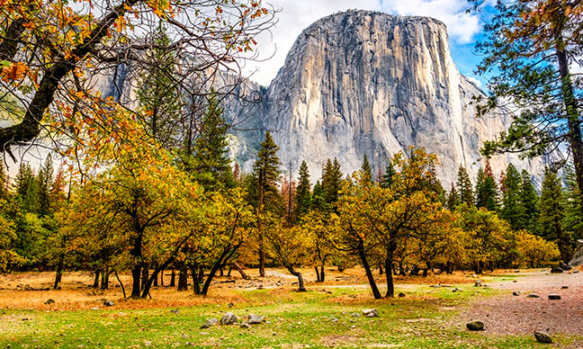 Where_can_I_see_fall_colors_in_California_